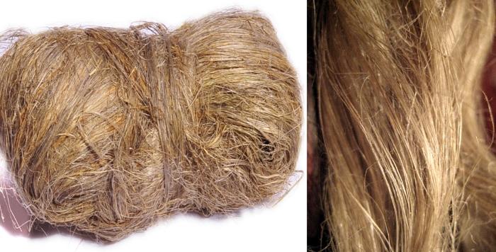 Лен и растительные волокна иного происхождения