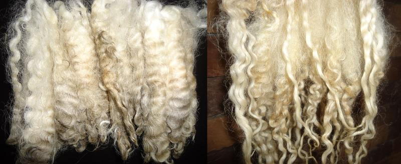 Шерсть овец для волос