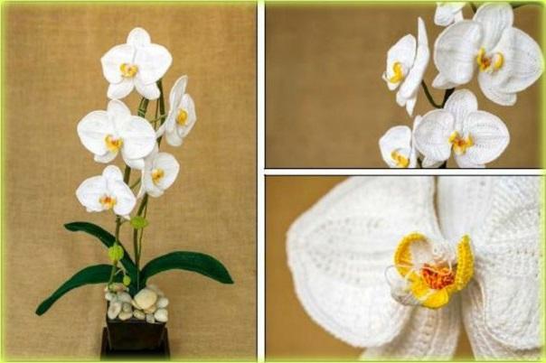 Вязаная крючком орхидея с пошаговым описанием