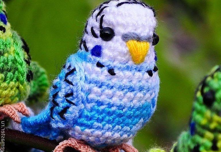 Амигуруми схема вязания волнистого попугая крючком